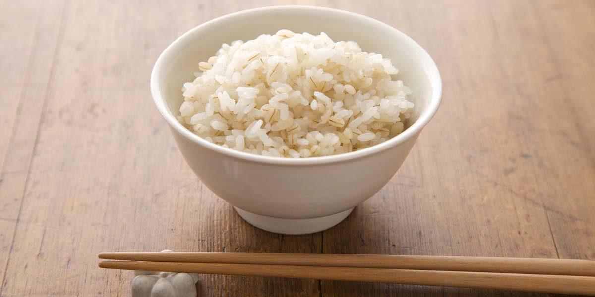 Hakubaku Barley and Rice