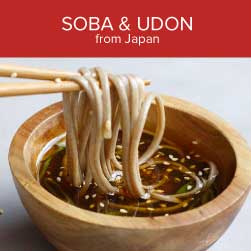 udon and soba noodles
